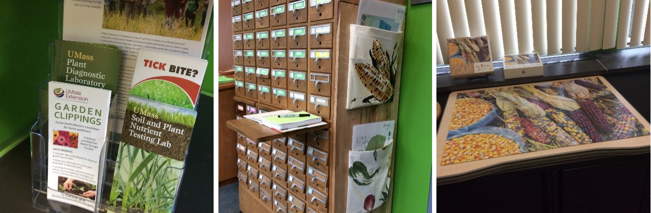 seed library catalog, puzzles, pamphlets